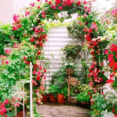 結婚式場ラブレーの入口