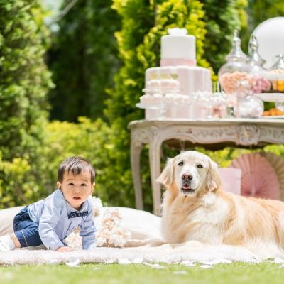 結婚式場のガーデンに座る犬と赤ちゃん
