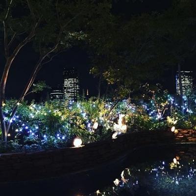 結婚式場葉山庵Tokyoからの夜景