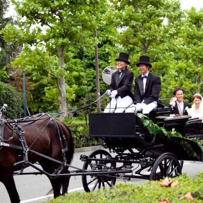 ホースパレードで結婚の祝福を