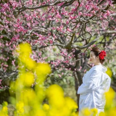 鎌倉で春のロケーションフォト